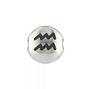 Aquarius Zodiac Sign Bead