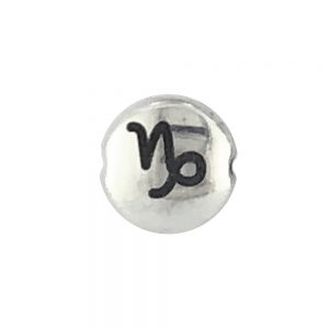Capricorn Zodiac Sign bead