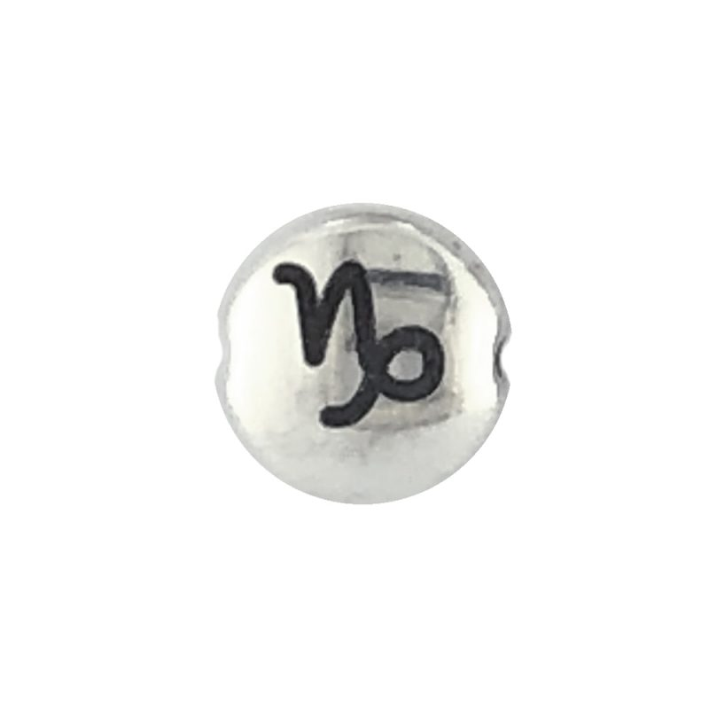 Capricorn Zodiac Sign bead
