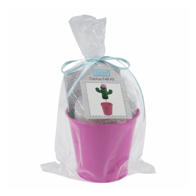 Cactus Kit in a bucket - sew your own cactus